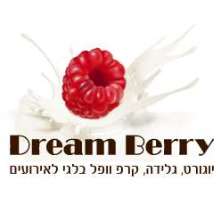 לוגו של חברת דרים ברי