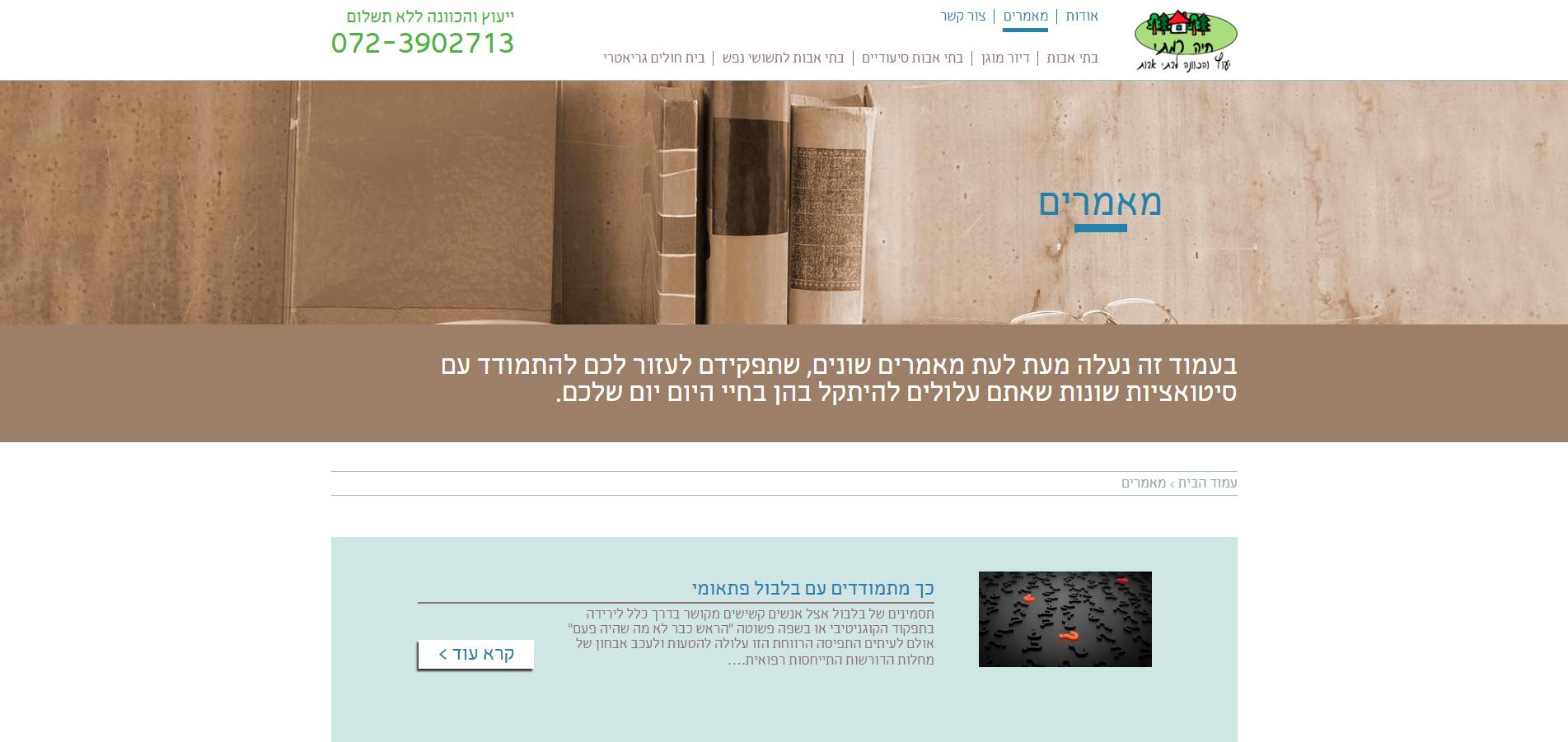 צילום מסך של קטגוריית מאמרים באתר חיה רמתי